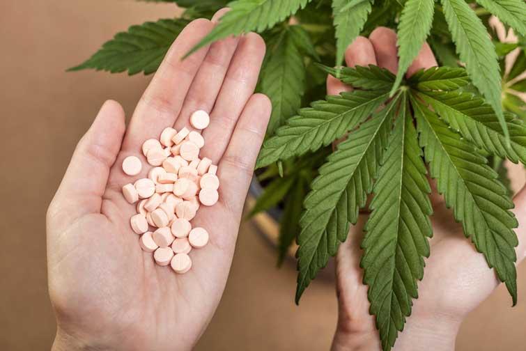 Верховна Рада відмовилася легалізувати медичний канабіс