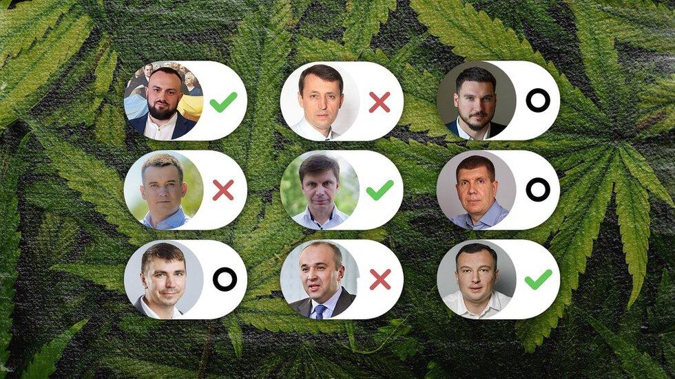 Як нардепи з Чернігівщини пояснили своє голосування за легалізацію коноплі