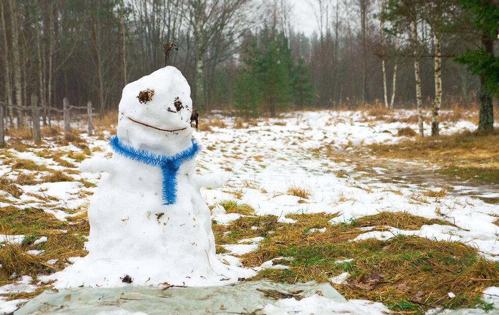Через 20-25 років зими в Україні може не бути